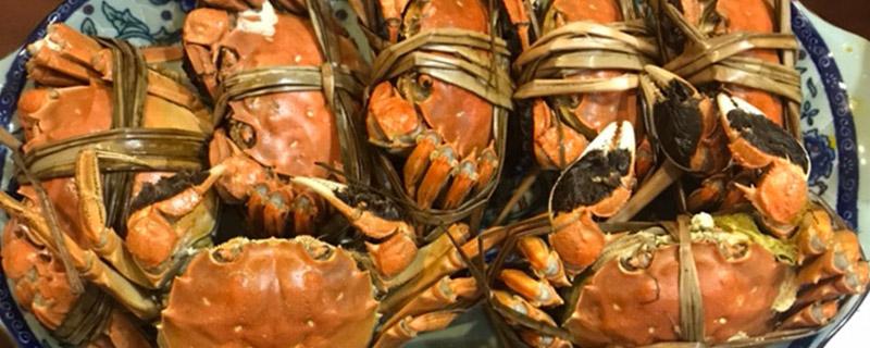 大闸蟹是海里的吗