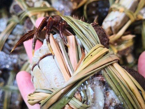 1月份还有固城湖大闸蟹吗?