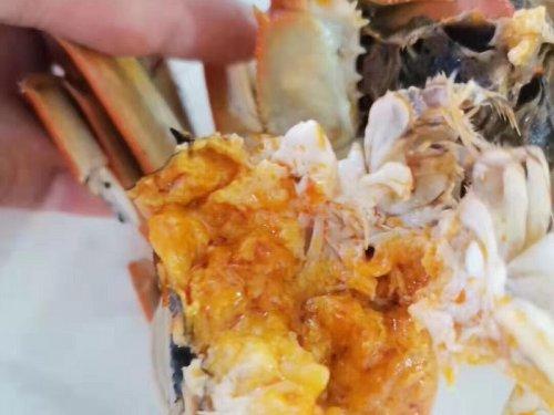固城湖大闸蟹是什么蟹
