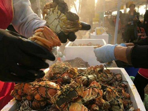 固城湖大闸蟹一年四季都有吗?