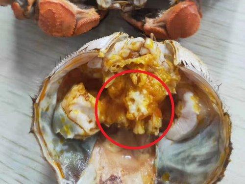 大闸蟹的蟹胃能吃吗