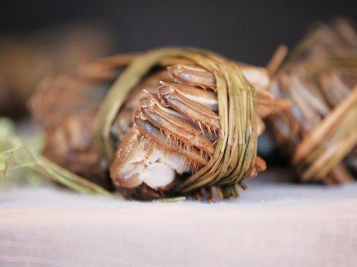 大闸蟹怎么挑选蟹黄肥美的?