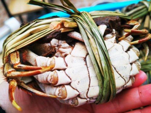 菜市场买有膏大闸蟹怎么挑选?