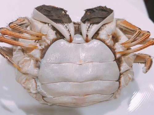 什么是即食大闸蟹