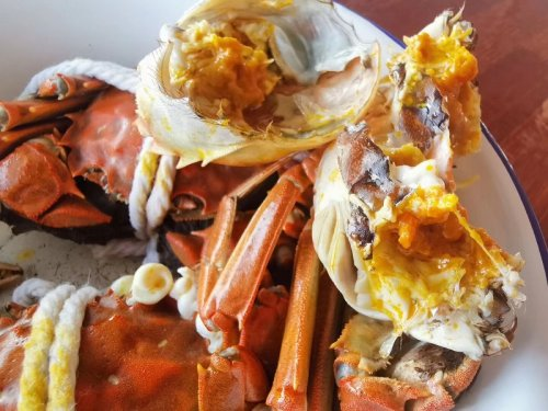 吃大闸蟹会中毒吗
