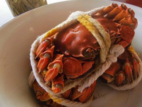 大闸蟹属于什么蟹?属于品种?