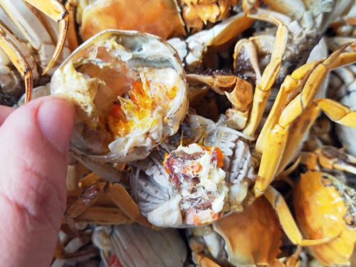 大闸蟹有什么副作用?哪些人不可以吃?