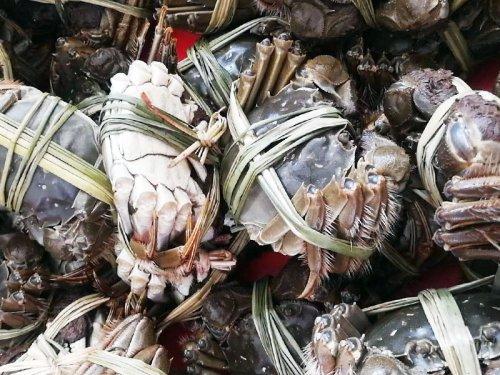 大闸蟹是河蟹吗?河蟹和大闸蟹的区别