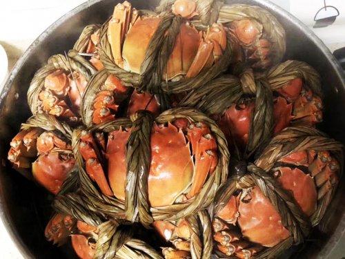 女人经期能吃大闸蟹吗?来大姨妈能大闸