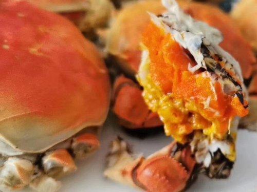 冬天可以吃大闸蟹吗