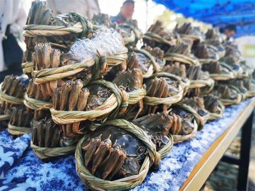 半斤的大闸蟹多少钱一只
