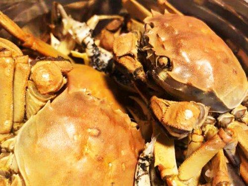 大闸蟹冷藏死了能吃吗