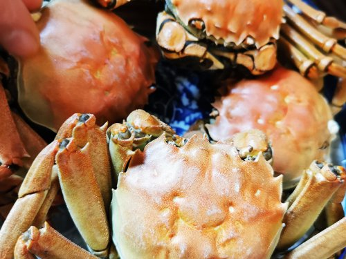 二月份有大闸蟹吗