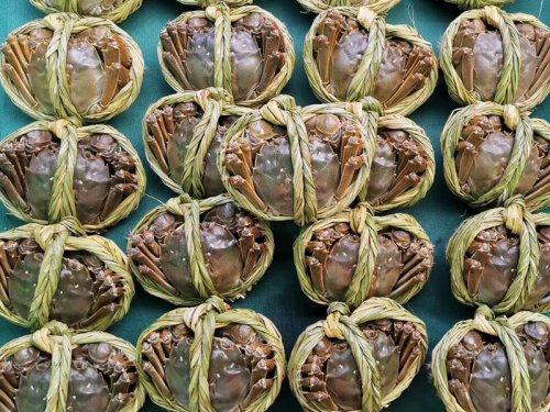 吃大闸蟹的季节是几月