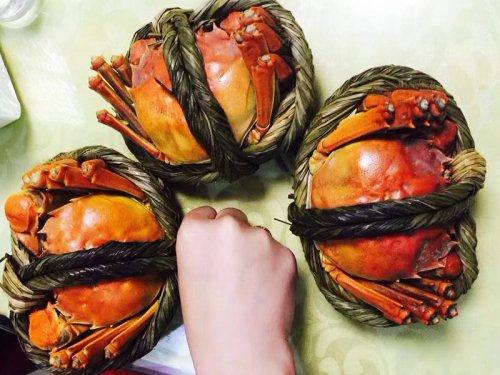 大闸蟹有哪些品牌