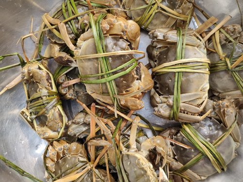 中秋可以吃大闸蟹吗