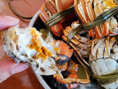 中秋节吃公蟹还是母蟹