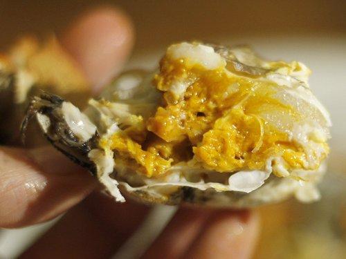 为什么大闸蟹越吃越饿