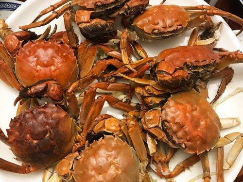 中秋送大闸蟹给长辈好吗