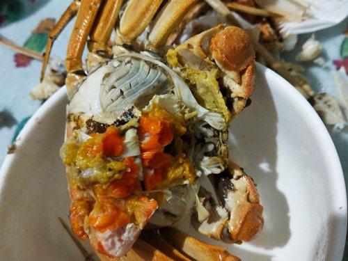 大闸蟹和橙子能一起吃吗