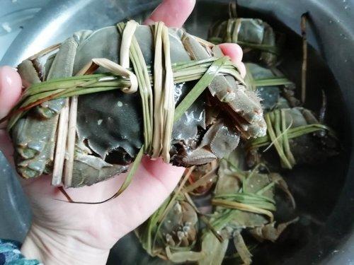大闸蟹和丝瓜可以一起吃吗