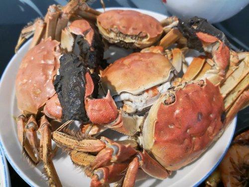 大闸蟹可以和羊肉一起吃吗