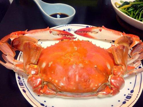 远海梭子蟹是淡水养殖吗