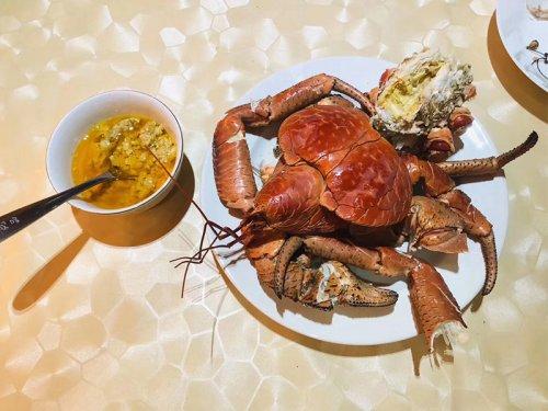 椰子蟹多少钱一斤