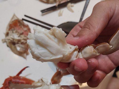 花蟹和梭子蟹的区别