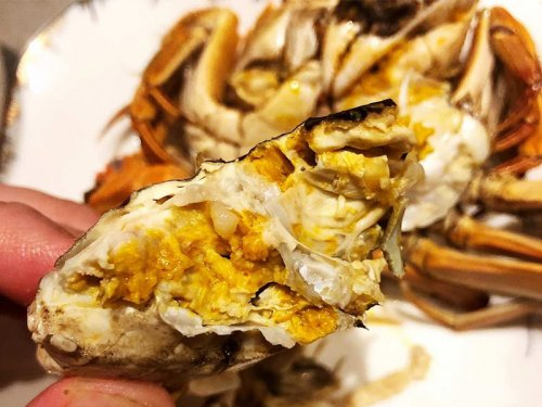大闸蟹肚皮发黄是什么情况