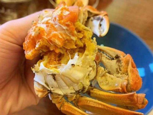 螃蟹什么时候最肥