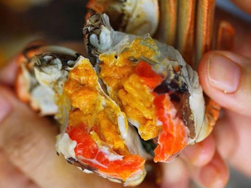 大闸蟹和榴莲能一起吃吗