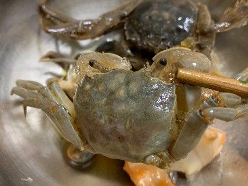 发财蟹为什么能生吃