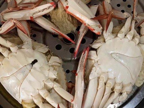 梭子蟹什么季节上市