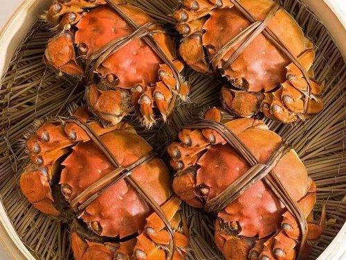 大闸蟹是夜行动物吗